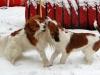 06-Sinn Suze (Luca) en Siep Swantje