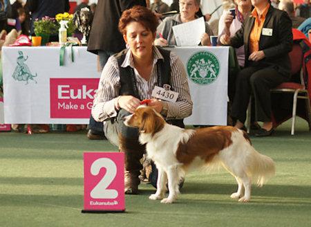winner2010-3